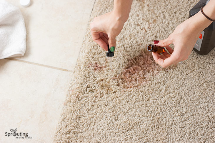 Natural Way To Cleaning Red Carpet Stains